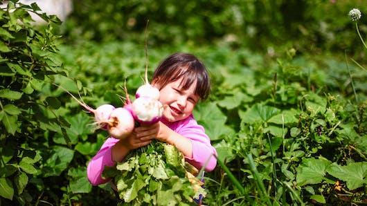 Navet, pourquoi ce légume est bon pour les enfants?