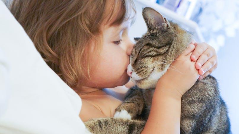 Chiens et chats: leurs traitements anti-puces sont dangereux pour les enfants