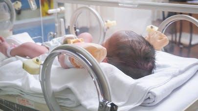 bébé prématuré en couveuse