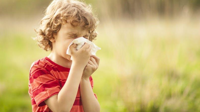Allergies: après les pollens de bouleau, gare aux pollens de graminées