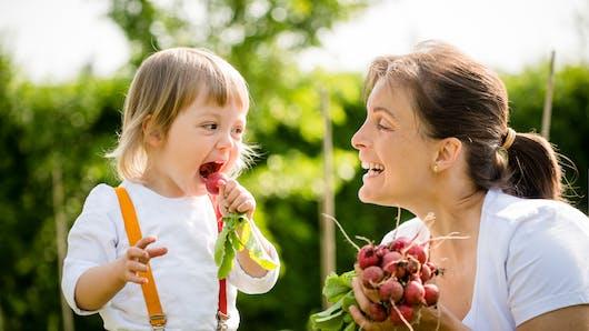 Le radis rouge, pourquoi ce légume est bon pour les enfants ?