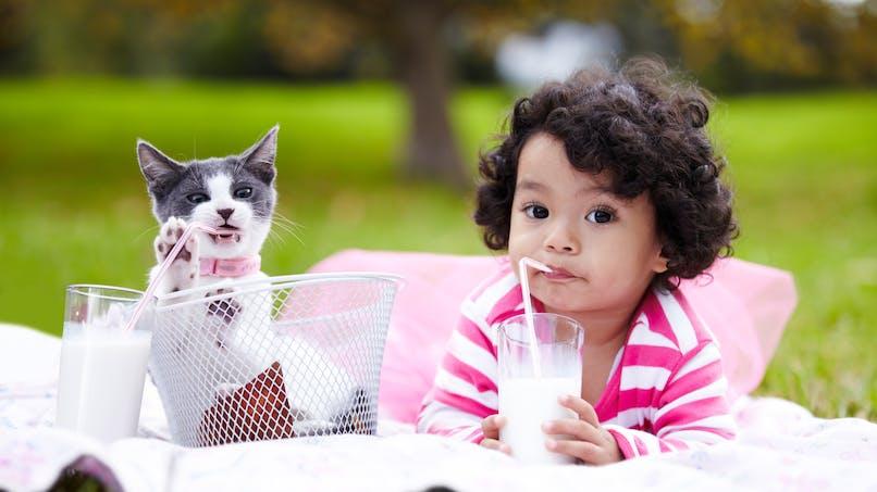Boissons végétales: 20 % des Français pensent qu'elles sont bonnes pour les enfants