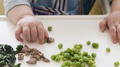 morceaux texture bebe alimentation diversification
