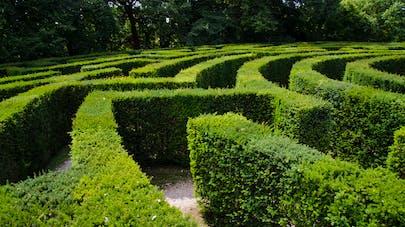 le labyrinthe végétal