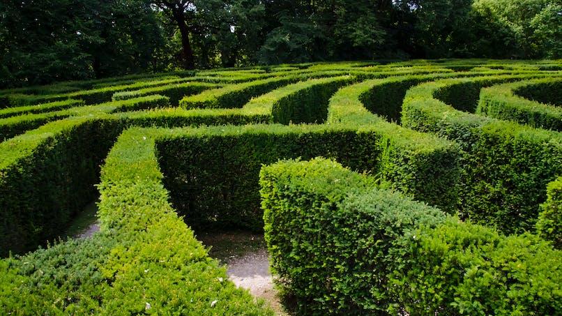 Sortie Loiret : le labyrinthe de Beaugency