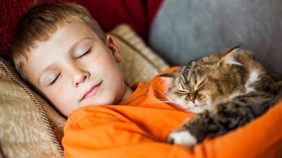 Un garçon dormant avec un chat