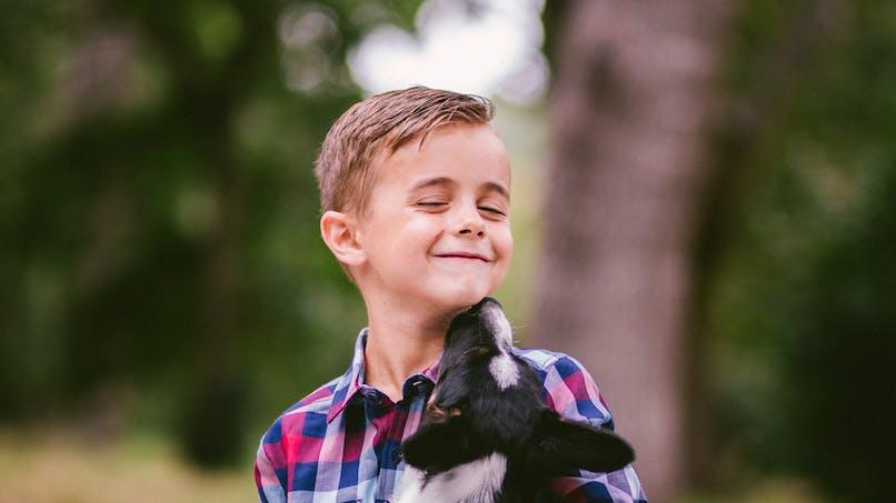 La salive des chiens et des chats, dangereuse pour les humains