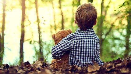 Maine-et-Loire: perdu en forêt, un enfant de 3 ans marche 4 km tout seul