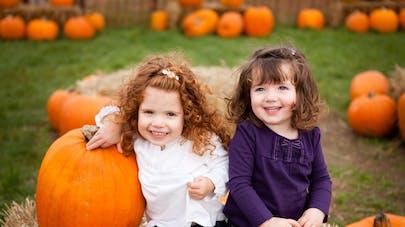 Des fillettes au milieu des citrouilles, pendant Halloween et la Toussaint
