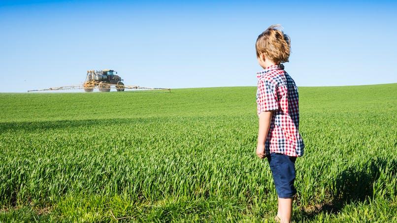 Enfants nés sans main: pour Yannick Jadot, c'est à cause des pesticides