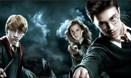 Harry Potter a 20 ans ! Notre sélection cadeaux pour Noël
