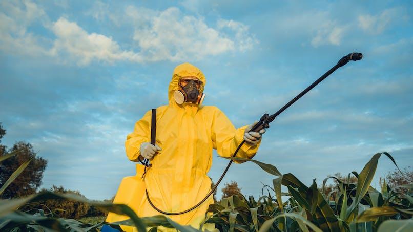 Pesticides : quels sont les départements qui en consomment le plus ?