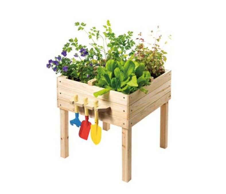 Le carré potager en bois - Explorbul
