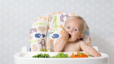 DME : un premier pas vers l'autonomie alimentaire ?