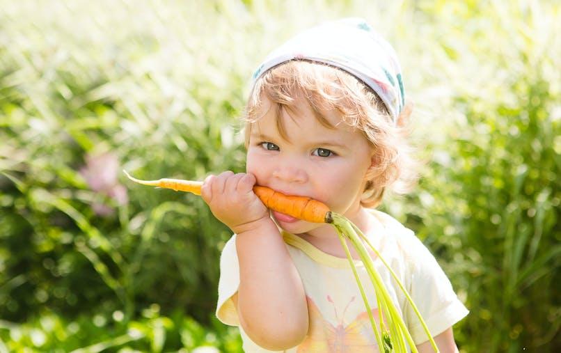 Enfant mangeant une carotte