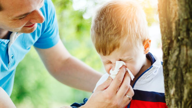 Rhinite allergique : une bactérie intestinale responsable ?