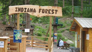 Indiana Forest Vars