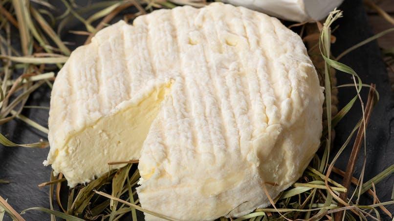 Escherichia coli : 13 enfants intoxiqués par des fromages Saint-Félicien et Saint-Marcellin