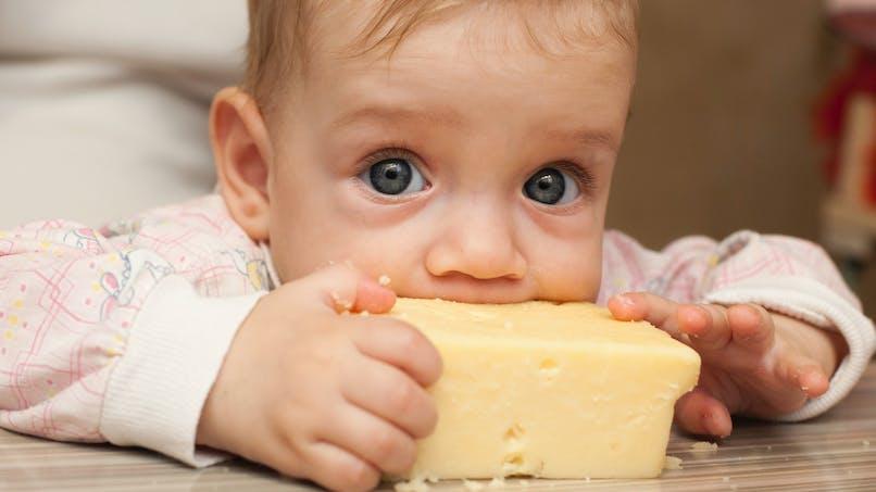 Escherichia Coli : le ministère de l'Agriculture recommande d'éviter le lait cru avant 5 ans