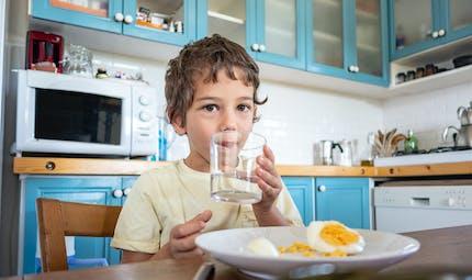 Allergie à l'œuf : les enfants peuvent y être allergiques avant même d'en avoir mangé !