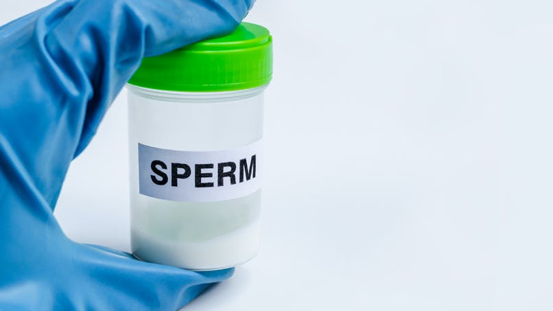Des parents autorisés à garder le sperme de leur fils décédé pour perpétuer la lignée