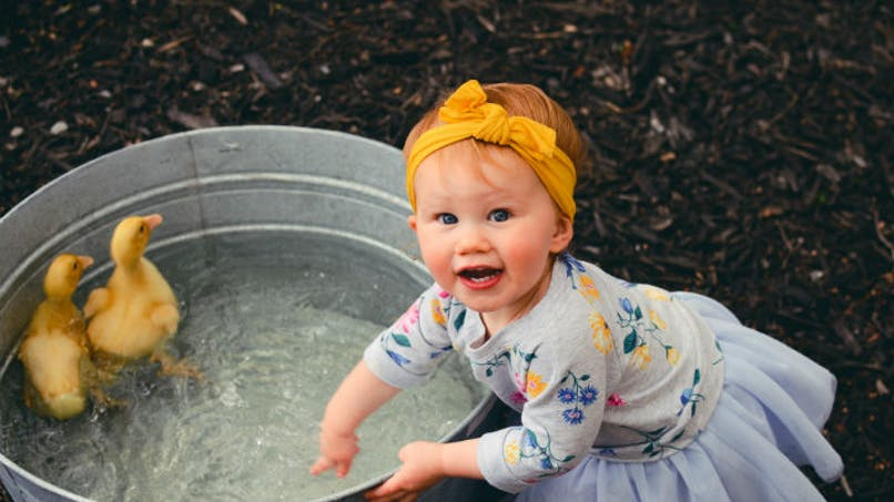 petite fille jouant près des canards