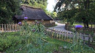 Village Gaulois Archéosite Gaulois