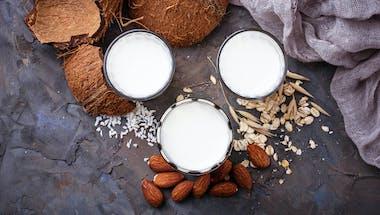 Tout ce que vous devez savoir sur les laits végétaux
