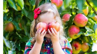 petite fille qui tient deux pommes