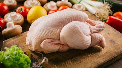 Intoxication alimentaire : ne lavez pas votre poulet avant cuisson !