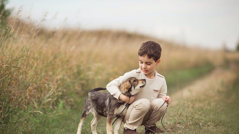 Mon enfant veut un chien