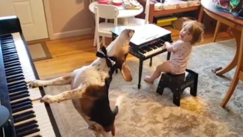Buzz : une petite fille et son chien forment un duo musical génial !