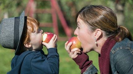 Alimentation : seuls 11 % des enfants mangent des fruits frais quotidiennement