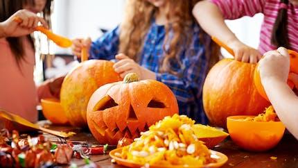 Halloween : certains potirons seraient toxiques !