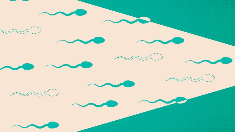 Contraception masculine : bientôt possible grâce à une simple injection ?