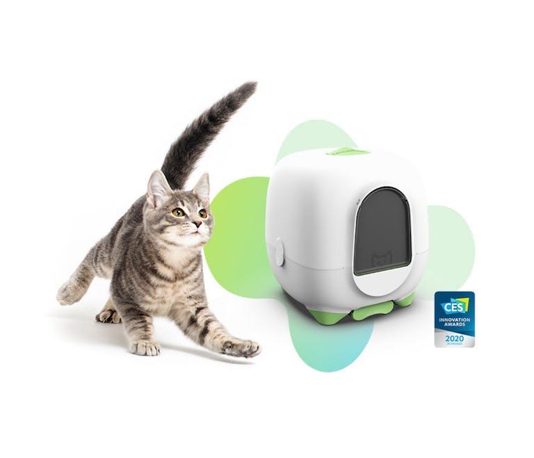 La Box Caremitou : la litière connectée pour chat