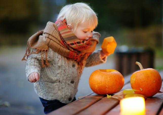 Bébé qui regarde des citrouilles