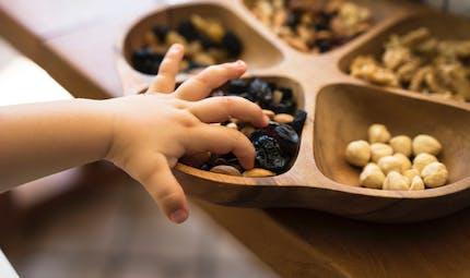 Les enfants allergiques à une noix ne le sont pas forcément à toutes