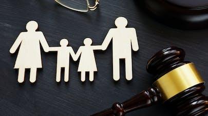 Les adoptions de l'enfant du conjoint, ou adoptions intrafamiliales, ont connu une forte hausse ces dernières années. Les chiffres.