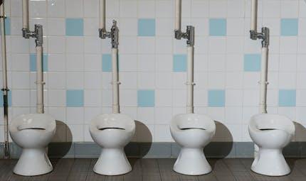 Ecoles d'Ile-de-France : les toilettes sont vétustes et sources d'insécurité