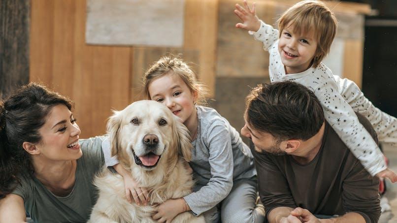 Covid-19 : quelles précautions prendre avec son chien ?