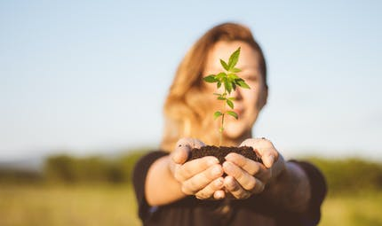 Une étude suggère que la marijuana peut nuire à la fertilité féminine