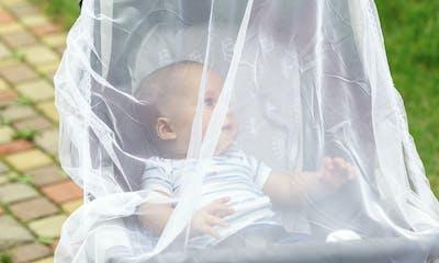 Antimoustiques : quels répulsifs choisir pour protéger bébé ?