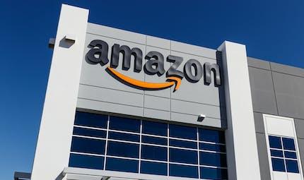 Amazon retire de la vente des poupées sexuelles à l'effigie d'enfants
