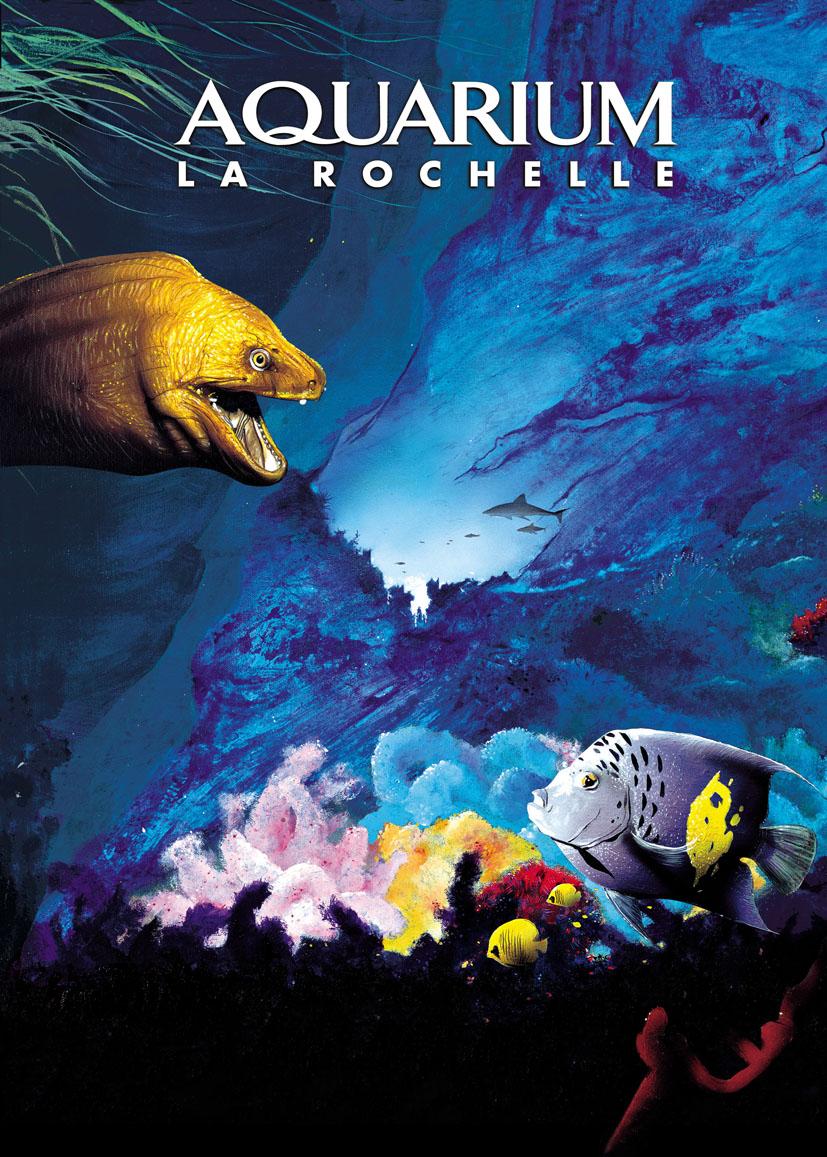 Image Aquarium La Rochelle