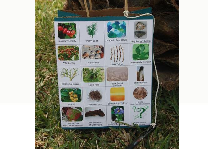 bingo nature