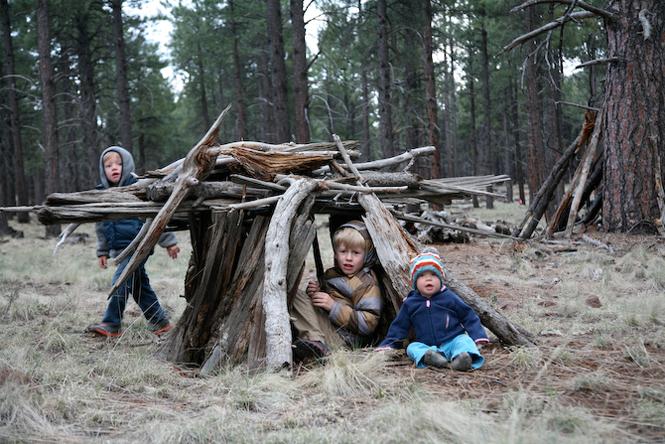 cabane foret enfant