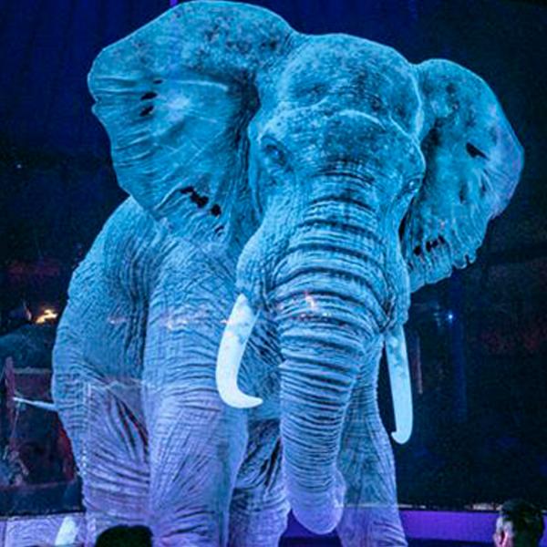 cirque Roncalli animaux virtuels hologrammes pour lutter contre cruauté animal