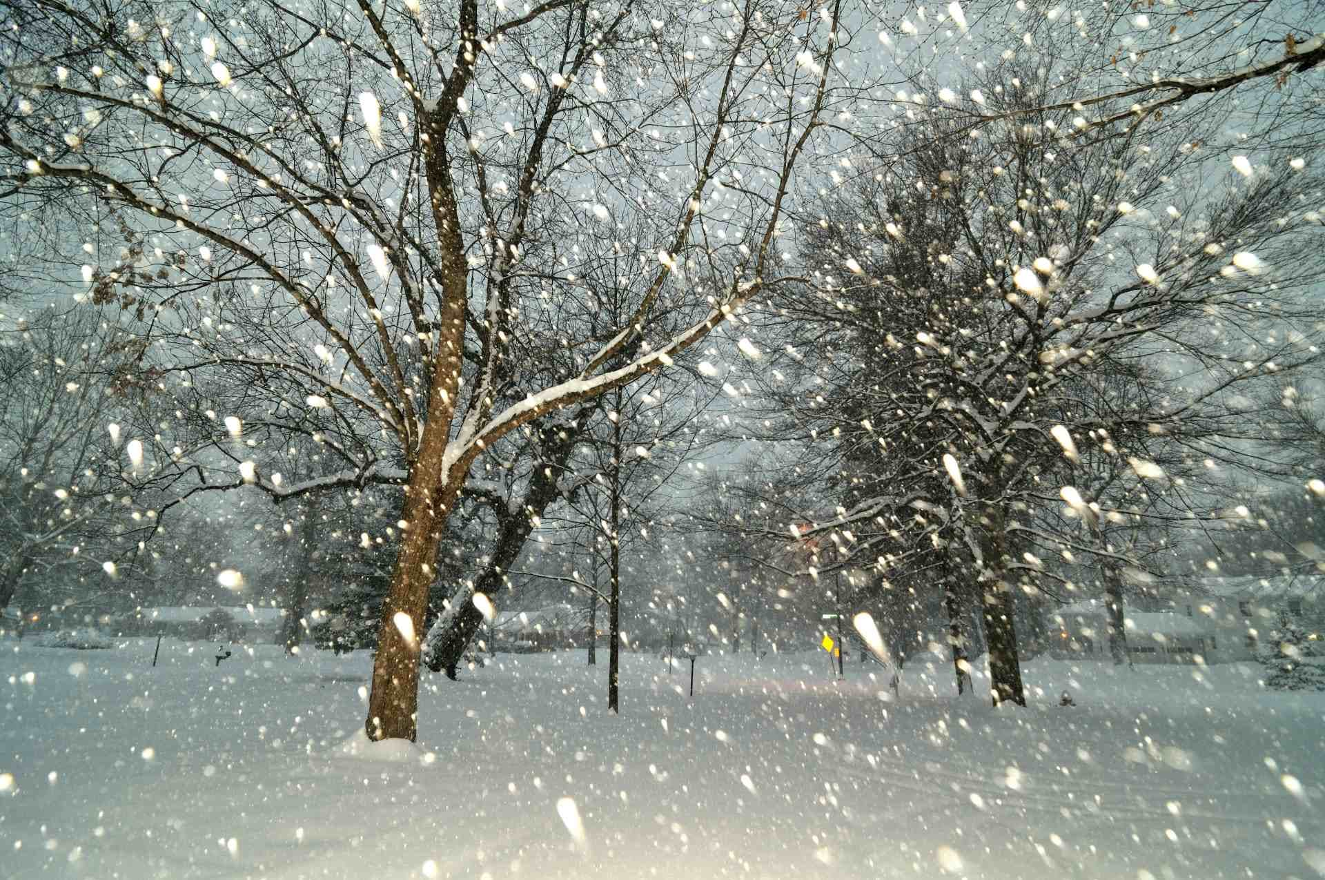 Chute de flocons de neige à Indianapolis, aux États-Unis