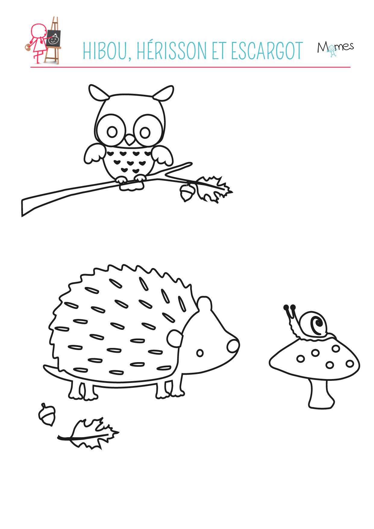 Coloriage Escargot Automne.Coloriage Automne Le Hibou Le Herisson Et L Escargot Momes Net